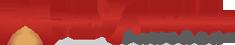 Advantage-Partners_logo